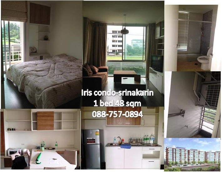 The Iris Rama 9-Srinakarin  condo for rent 12500 per month 49 sqm ready to move